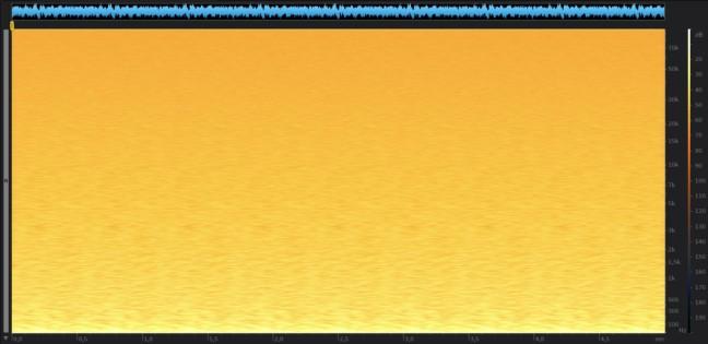 rumore-rosa-24-192