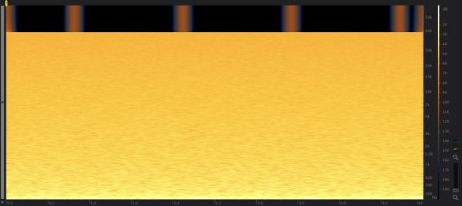 rx5.jpg