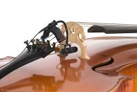 1600-4099B_cello.jpg