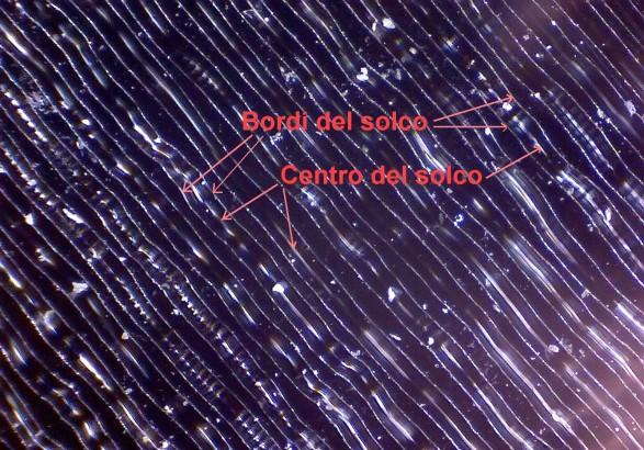 disco_45_giri_tracce_su_microscopio_01_large.jpg